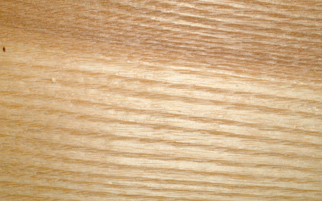 White Ash Wood Grain ~ Dendrology at virginia tech
