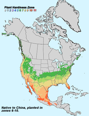 Catalpa Range Map